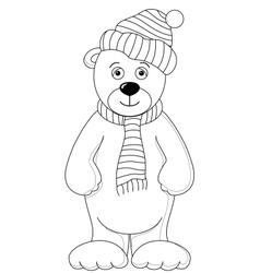 teddy vector image