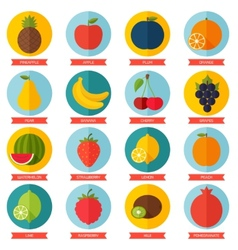 Fruits flat icon set Colorful template for cooking vector image vector image