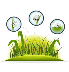 Funny insect character inside spring grass vector