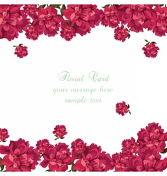 Rose flowers background card vector