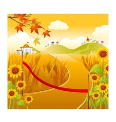 sunflower field and sun vector image vector image