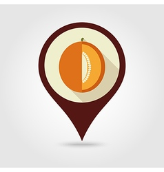 Melon flat pin map icon fruit vector