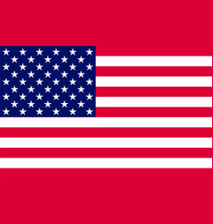 American flag official symbol of the state vector