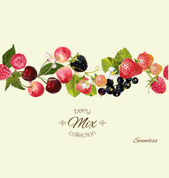 Berry seamless border vector
