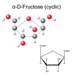 Structural chemical formula and model of fructose vector image vector image