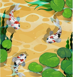 Three fish swimming in the pond vector