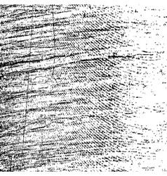 Texture Strokes vector image