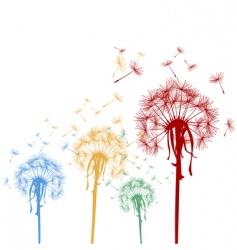 Silhouette dandelions vector