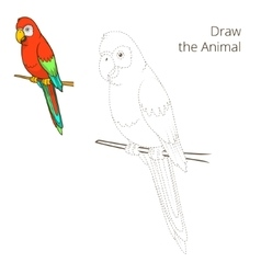 Draw the animal parrot educational game vector