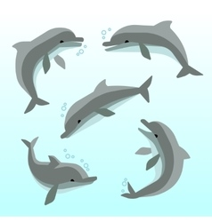 Cute dolphins in different poses set vector