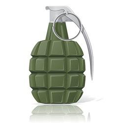 grenade 02 vector image vector image