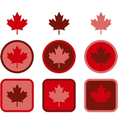 Maple leaf flat design vector image vector image