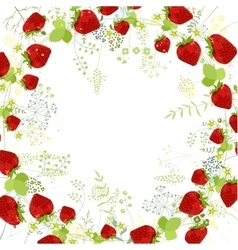 Square frame with contour strawberries and herbs vector image