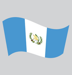 Flag of guatemala waving on gray background vector