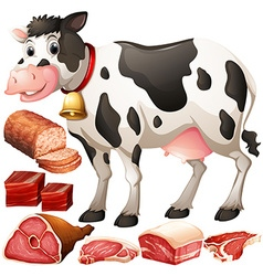 Cow and meat products vector image vector image