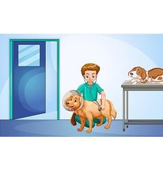 Vet healing dog at the hospital vector