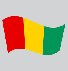 Flag of guinea waving on gray background vector