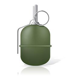 grenade 03 vector image