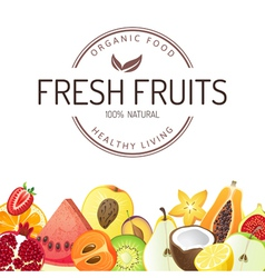 Fresh fruits vector