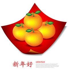 Chinese new year mandarin oranges on red cloth vector