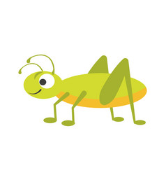 Funny vigorous grasshopper with big eye and long vector