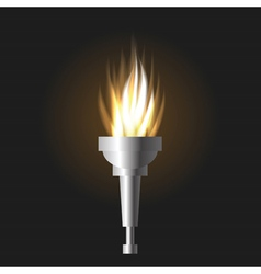 burning torch vector image