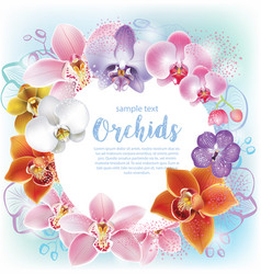 greeting card with orchids flowers vector image vector image
