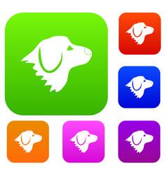 Retriever dog set collection vector
