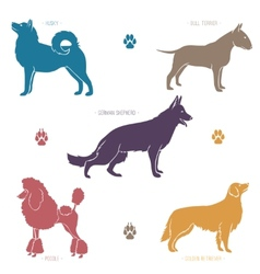 Set of different dog breeds silhouettes vector