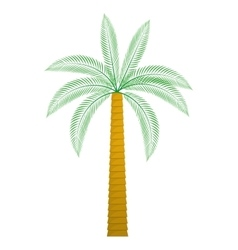 Palm tree nature plant design vector