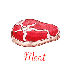 Fresh meat steak sketch isolated icon vector