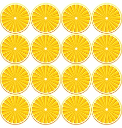 background with citrus-fruits vector image