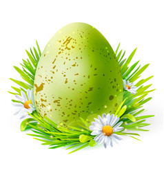 Green egg with spots on grass vector