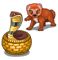 Mongoose and cobra animal isolated vector
