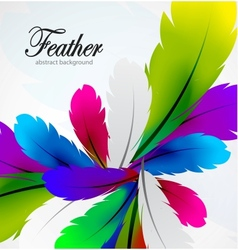 Colorful feather background vector