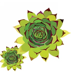 Tropical green flower vector