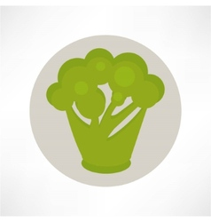 Broccoli abstract isolated on a white backgrounds vector