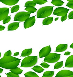 Realistic green leaves isolated texture on white vector