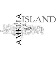 Amelia island resorts text word cloud concept vector