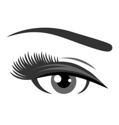 grey eye with long eyelashes vector image