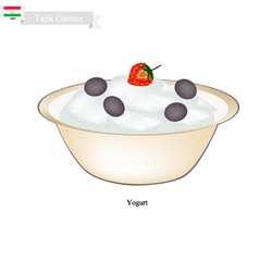 Tajik yogurt or fermented milk cream vector