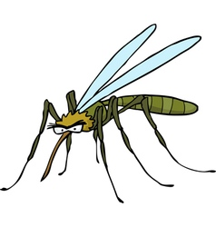 Mosquito doodle vector