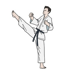Karate fighter isolated vector