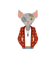 Cute fashion sphinx cat guy character dressed up vector