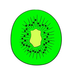 Sliced kiwi fruit halves on white background vector
