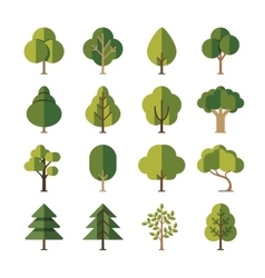 Green summer forest tree flat icons vector