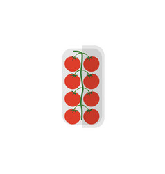 Isolated love apple flat icon tomato vector