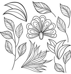 Set of Monochrome Contour Flowers and Leaves vector image