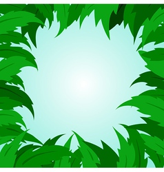 Tropical leaf leaves tree green vector