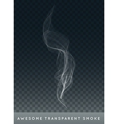Realistic cigarette smoke or fog or haze with vector